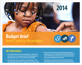 Budget brief: Health Sector in Mozambique